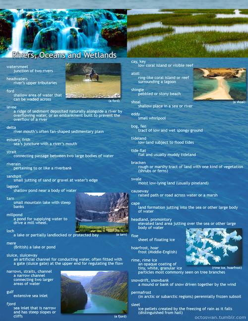 Rivers Oceans Wetlands