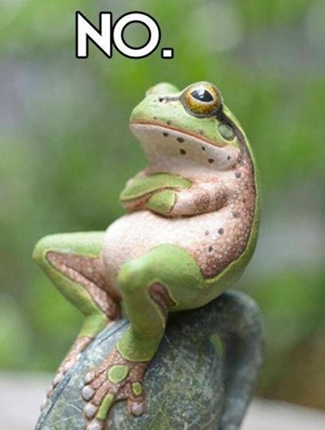 "Frog with arms crossed and ""No"" written above his head"